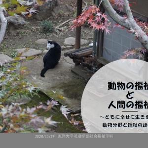 動物分野と福祉の連携(東洋大学で講演)