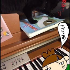 キレイな音色のピアノ