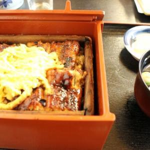 福岡~柳川 鰻のせいろ蒸し&雛祭の間