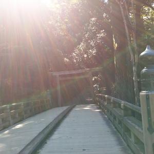 神社仏閣巡りと降り注ぐプラーナ