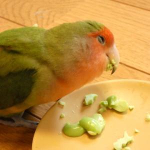 【枝豆にうっとりこまち】