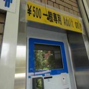 【入場制限ギリギリの新宿御苑 ブルーインパルス見学記】