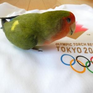 【日本勢は金メダルラッシュ こまちちゃんと一緒に応援 東京2020オリンピック】