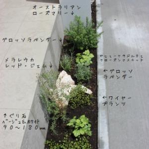 プチ植栽屋(笑)Y様邸に植栽を・・・