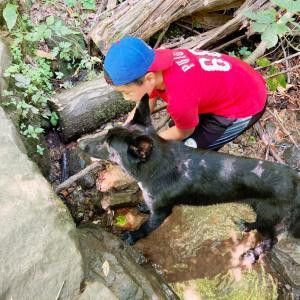 愛犬ザビ: 節約の為5ドルのプールで我慢して。