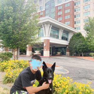 またまたエリー湖:シェラトンホテルが犬に優しすぎ。
