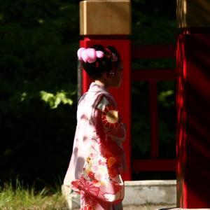 多賀神社と伏見稲荷の花手水  2020/09/06