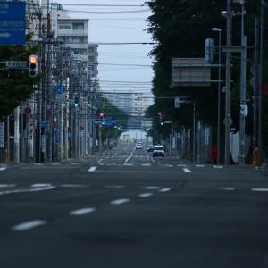 大通公園バラ園  2021/07/04