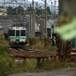 朝里駅と秋桜と電車  2021/09/18