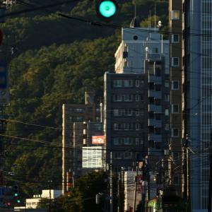 朝の市電とシマエナガのティラミス  2021/09/19