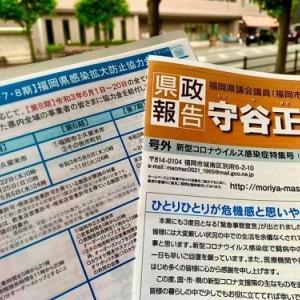 県政報告書地域配布