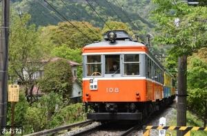 新緑の箱根登山鉄道