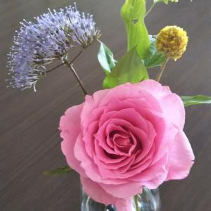 今週のお花♡