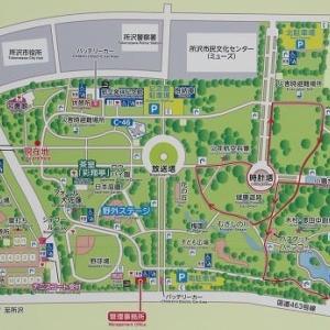 開園された航空記念公園内の日本庭園へ(埼玉・所沢)