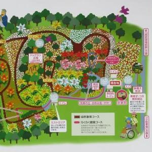 今年は営業中止の「ところざわのゆり園」(埼玉・所沢)