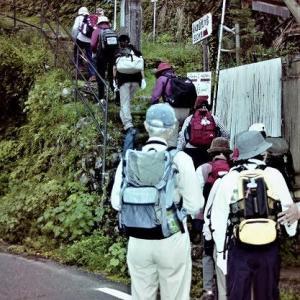 熊野古道 伊勢路と本宮道を歩く⑥(和歌山)(2003年)