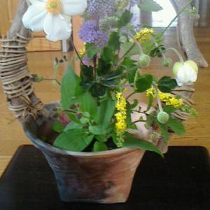 庭の草花を娘の花器に
