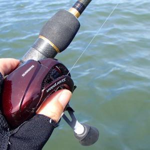 初釣りの琵琶湖にて釣り引退を考えました・・