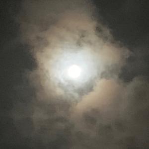 満月のパワーで絶対運がいいね