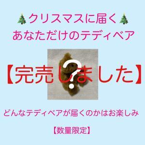 完売しました!!「クリスマス届くあなただけのテディベア」(数量限定)