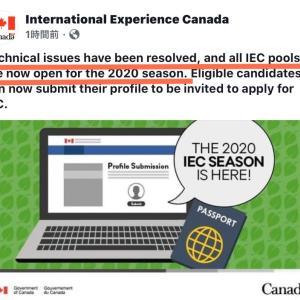 カナダワーホリ応募が再開しています。