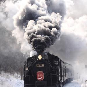 冬の道東観光はじまるよ 1月11日