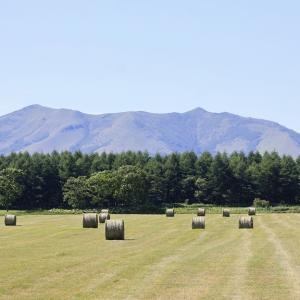 牧草ロールのある風景 7月14日