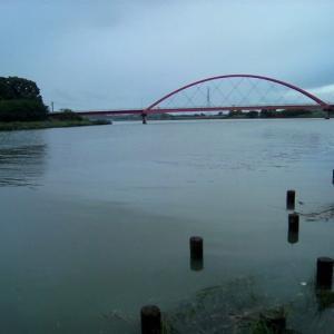今日、夕方の都田川です。