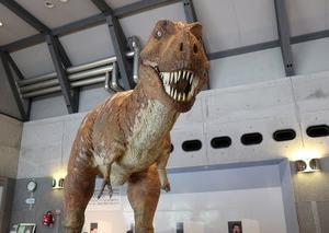 動くティラノサウルスで有名、佐川地質館に行って来ました。