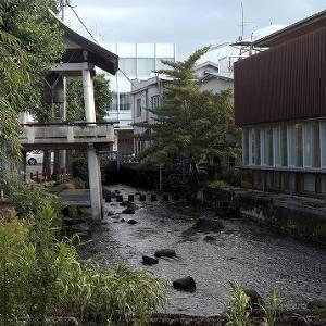 1泊2日いずっぱこ&千葉旅その4~早川駅近くの漁港で朝食を頂く