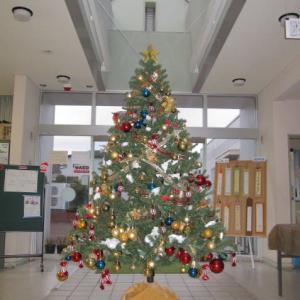 公民館にクリスマスツリーが飾ってありました。