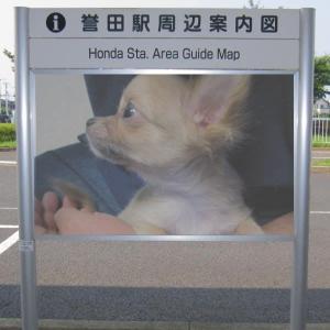 駅周辺案内図~その6