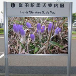 駅周辺案内図~その9