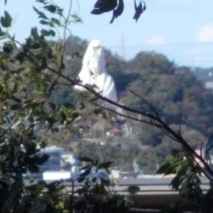 台風19号通過後,北鎌倉から鎌倉中央公園へ