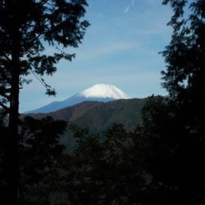 新雪の富士山に感激しながら萱場平上まで登った丹沢;塔ノ岳(2019年31回目)