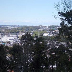 コロナに負けず鎌倉散策:台峯緑地・亀ヶ谷坂・源氏山公園周遊(前編)