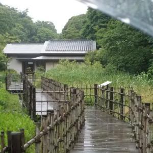 雨の日の鎌倉散策;鎌倉中央公園・大船駅定番コース周遊