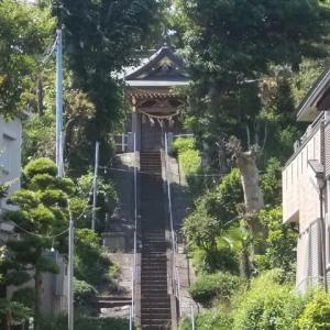 初夏の鎌倉・藤沢;川名御霊神社・神光寺・清水谷戸・西鎌倉周遊