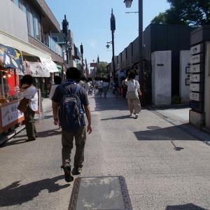 梅雨の鎌倉;日当公園・葛原岡神社・源氏山・鏑木清方記念美術館周遊