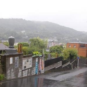 雨の鎌倉;鎌倉中央公園・光照寺・成福寺・大船駅周遊定番コース
