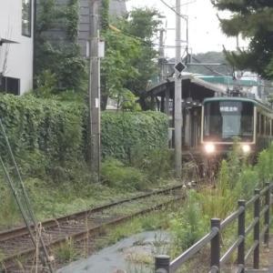 雨の鎌倉;和田塚・成就院・月影地蔵・夫婦池公園縦走(前編)