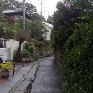 毎日雨,雨,雨,・・・の鎌倉;歩くのは定番コースばかり