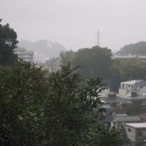 秋深まる雨の鎌倉;神明神社・光照寺・成福寺・大船駅周遊