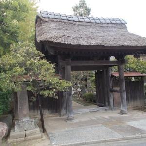 秋の気配を満喫する鎌倉大船駅往復定番コース(後編)