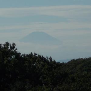 雨の狭間の鎌倉散策;久々に富士山と丹沢が見えた台峯緑地