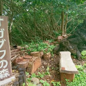 オガグワの森