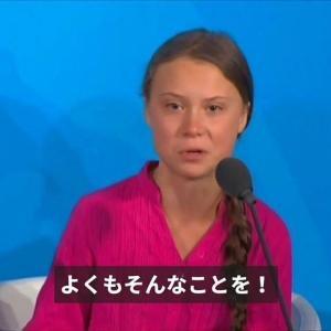 【COP25】環境活動家グレタは、なぜ中国を批判しないのか? 二酸化炭素排出量は世界一 米国の約2倍、日本の約3倍CO2排出