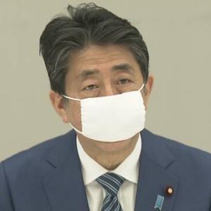 【安倍首相】布マスク着用