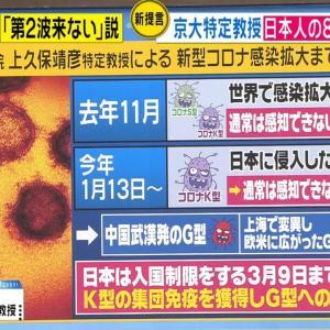 【コロナ】京大・上久保教授「日本人はすでに今年1月をピークにK型ウイルスに感染し、集団免疫を獲得した」「自粛は不要」