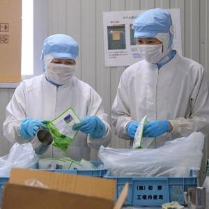 JAL社員、食品工場で袋詰め作業... ほうれん草3000個を袋詰めする日も